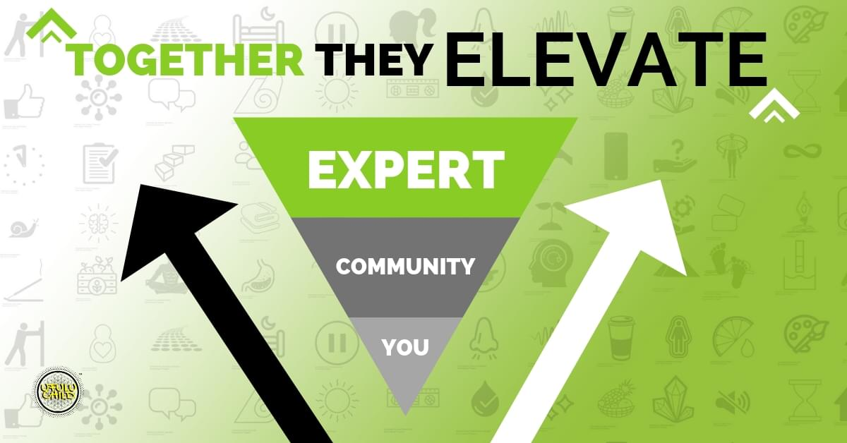 Together They Elevate - You, Community, Expert